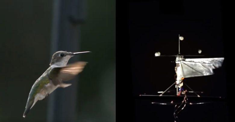 Dron colibri